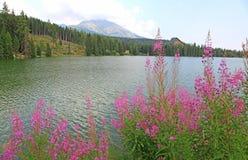 Pleso Strbske - Tarn σε υψηλό Tatras, Σλοβακία Στοκ εικόνα με δικαίωμα ελεύθερης χρήσης