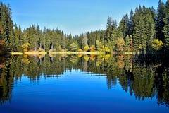 Pleso Vrbicke - που αντανακλά στη στάθμη ύδατος του Vrbicke Tarn στην κοιλάδα Demanovska στη Σλοβακία Στοκ Φωτογραφία