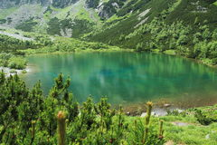 Pleso Zelene στα υψηλά βουνά Tatras Στοκ φωτογραφίες με δικαίωμα ελεύθερης χρήσης