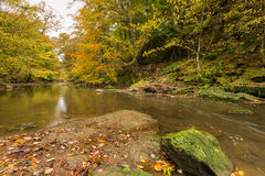 Plessey Woods and River Blyth Stock Images
