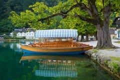 Pletna łodzie dokują pod nadjeziornym drzewem na jeziorze Krwawiącym, Slovenia Obraz Stock