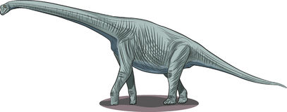 Pleurocoelus. Vector drawing of a dinosaur - Pleurocoelus Stock Photos