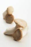 pleurotus στρειδιών μανιταριών βα&sigma Στοκ φωτογραφία με δικαίωμα ελεύθερης χρήσης