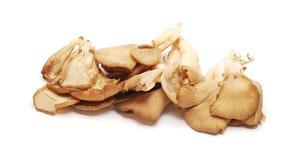 Pleurotus mushrooms Stock Image