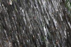 pleuvoir Photo libre de droits
