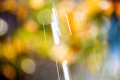 Pleuvoir la baisse Photographie stock libre de droits
