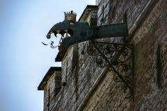 Pleuvoir la gouttière décorée de la tête de gargouille de dragon sur hôtel de ville de Tallinn photos libres de droits