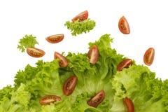 Pleuvoir la salade images stock