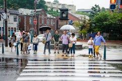 Pleuvoir le jour dans Hotaru, le Hokkaido Japon Image libre de droits