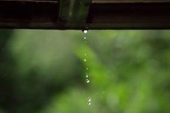 Pleuvoir le jour en parc Images stock