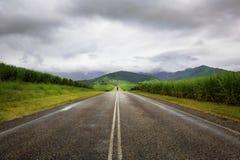 Pleuvoir sur la route parmi Cane Fields Photo stock