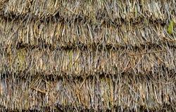 Plewa dach wioska dom Zdjęcia Royalty Free
