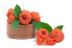 Plewa pomidory z liśćmi w drewnianym pucharze odizolowywającym na białym tle Zdjęcia Stock
