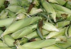 Plewy żółta kukurudza Zdjęcia Royalty Free