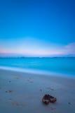 plewy plażowy brzegowy kakaowy wschodni morze Singapore Obrazy Royalty Free