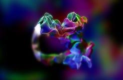 Plexus de belles particules, illustration 3d Photo libre de droits