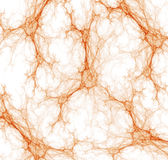 Plexuses Of Capillary Abstract Stock Images