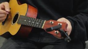Pleyer delle ukulele archivi video