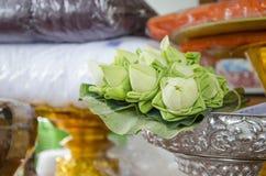 Pli de Lotus Photo stock