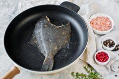 Plie crue dans la casserole Fond gris, vue sup?rieure photographie stock libre de droits