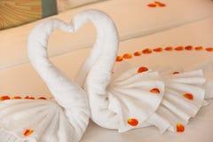 Plier un cygne de serviette pour des décorations avec des pétales de rose Photographie stock