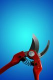 Pliers Royalty Free Stock Image