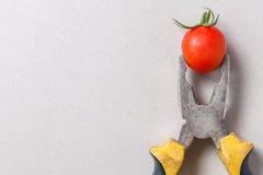 Pliers and cherry tomato Stock Photo