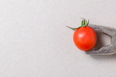 Pliers and cherry tomato Stock Photos