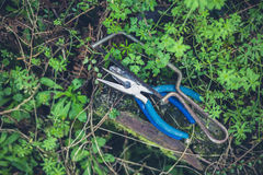 Pliers and hacksaw in garden Stock Images