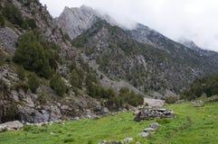 Pliez dans la vallée de la rivière Dugoba au Kirghizistan Image libre de droits