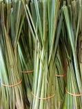 Plik świeży lemongrass Zdjęcie Stock