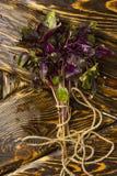 Plik wiążący wokoło sznurka świeży basil kłama na starym drewnie Zdjęcie Stock