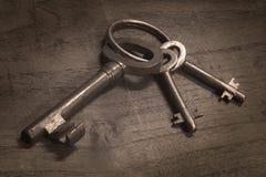 Plika rocznika starzy klucze Obrazy Stock