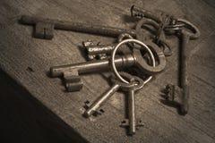 Plika rocznika starzy klucze Zdjęcia Stock
