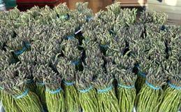 Pliki Świeży Asparagus zdjęcie royalty free