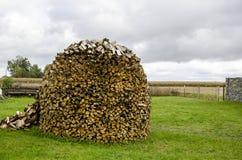 Pliki drewno dla kuchenki Fotografia Royalty Free