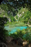 Plitvica national park. National park plitvica lakes in Croatia. It is national park with hundrets of lake with beautiful blue and green water Stock Photo