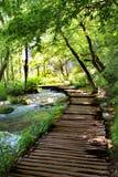 Plitvice不可思议的乘驾湖,克罗地亚 免版税库存照片