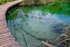 Plitvice国家公园在克罗地亚 免版税库存照片