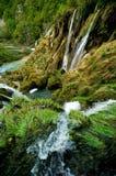 Plitvice湖-克罗地亚 库存照片
