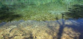 Plitvice湖江边Plitvice国立公园的在克罗地亚 库存图片