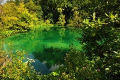 Plitvice湖的湖 免版税库存图片