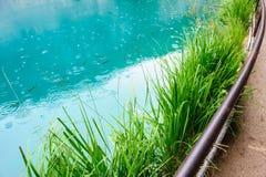 Plitvice湖,克罗地亚清楚的水  免版税库存照片