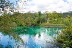 Plitvice湖绿松石透明水  免版税库存图片
