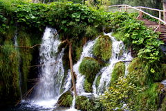 Plitvice瀑布01 免版税库存图片
