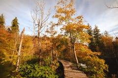 plitvice τοπίων λιμνών φθινοπώρου Στοκ Εικόνα