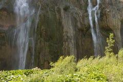plitvice красивейших течений свежее зеленое окружило водопады водопада вегетации Стоковые Фотографии RF