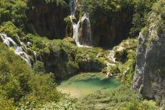 plitvice красивейших течений свежее зеленое окружило водопады водопада вегетации Стоковые Изображения