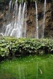 plitvice озер Стоковые Фото
