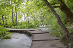 Plitvice. Lakes National Park, Croatia stock photo